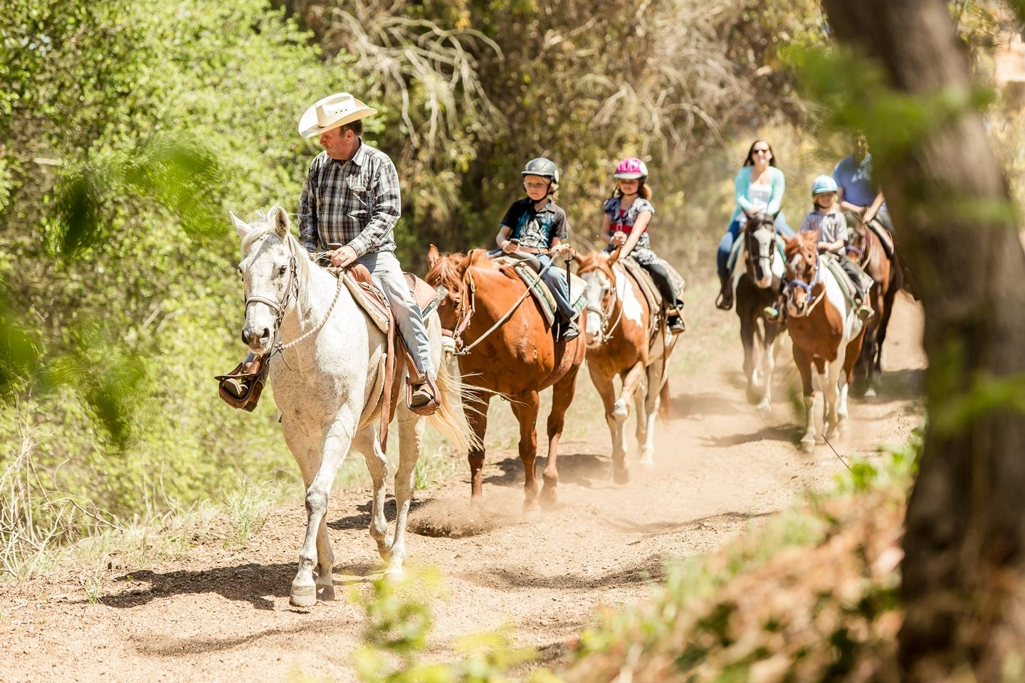 Horse back riding activity in Palos Verdes