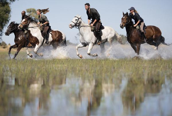 Heli and Horseback Safaris
