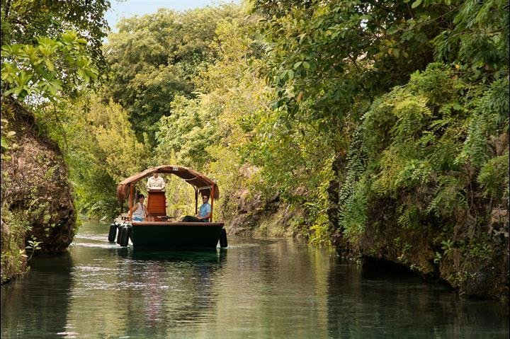 Mayakoba Waterways Eco Boat Tour