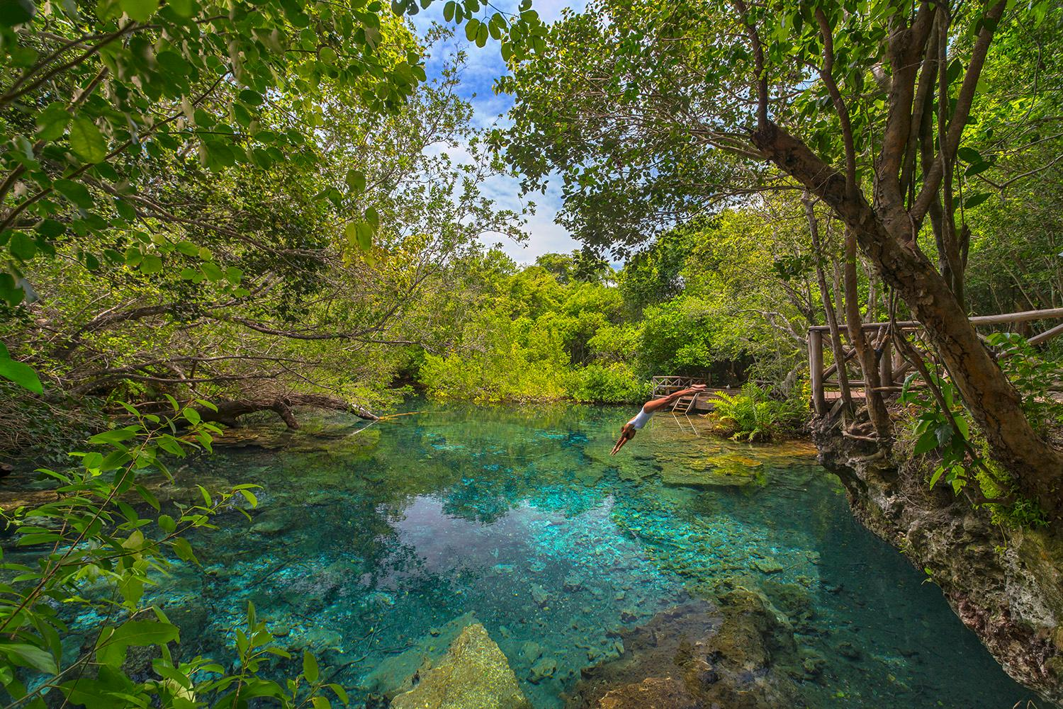 Indigenous Eyes Ecological Reserve